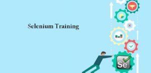 Selenium training Toronto
